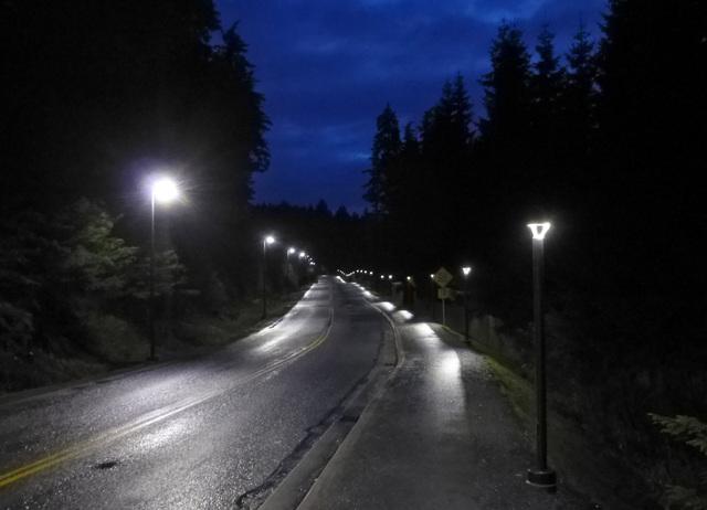 Path Lights Night