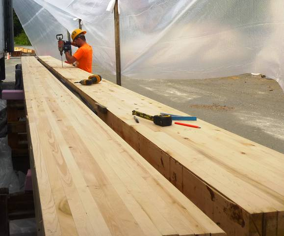 Yellow Cedar Working